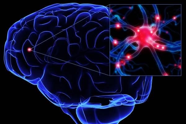epilepsiya va tutqanoq