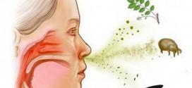 Allergiyani davolash mumkin