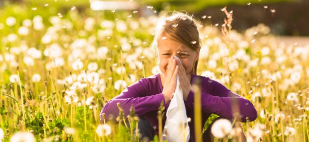 Photo of Mavsumiy allergik rinit – tashxislash va davolash choralari ( 2-qism )