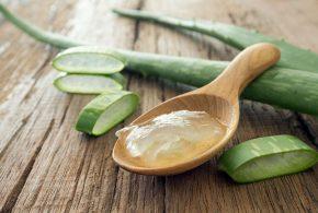 Aloe yuzdagi ajin va toshmalarga qarshi