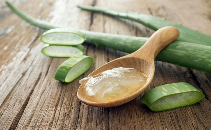 Photo of Aloe yuzdagi ajin va toshmalarga qarshi