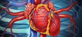 Infeksion endokardit: sabablari, belgilari, kechishi va davolash