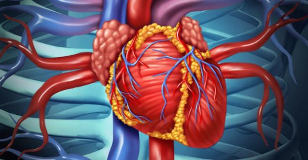 Photo of Infeksion endokardit: sabablari, belgilari, kechishi va davolash