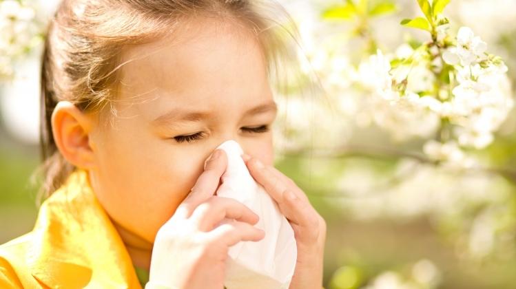 shamollash yoki allergiya