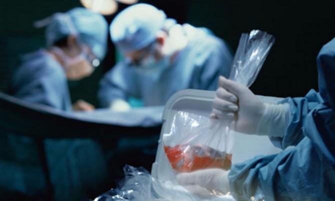 Photo of Organlar transplantatsiyasi tarixiga bir nazar!