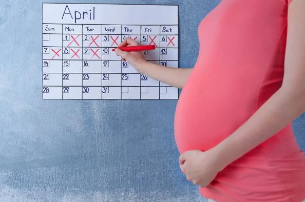 Homiladorlik kalendari